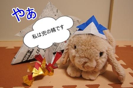 DSC01464.jpg