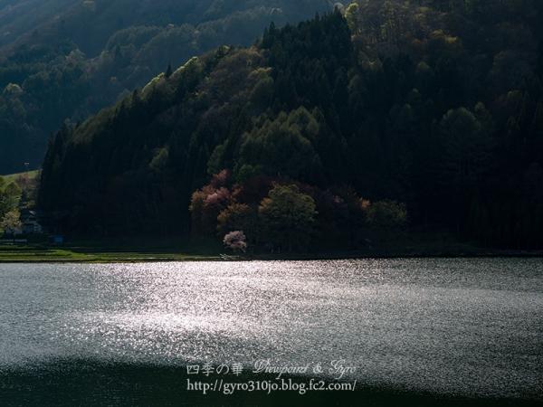 中綱湖 A