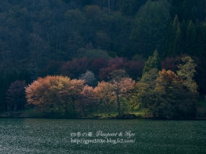 中綱湖 C