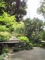 ホテルニューオータニ日本庭園(6)