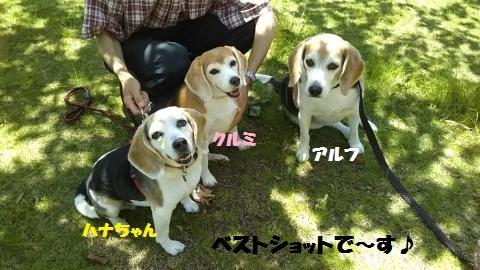 DSC_0149_convert_20180610061657.jpg