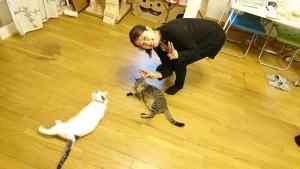 猫に喜ぶ古屋先生!かわいい~♡