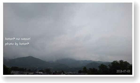 札幌は梅雨です