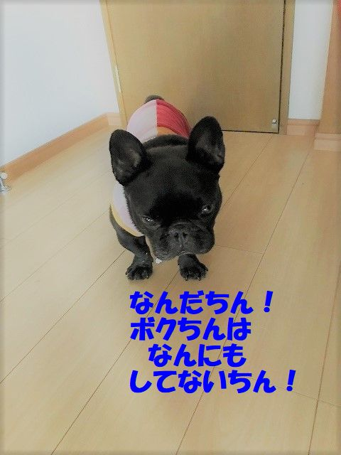 IMG_1591.jpg