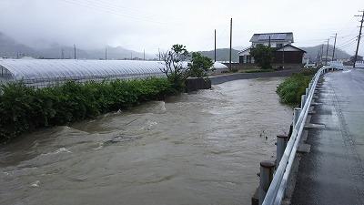 kouzkei (7)
