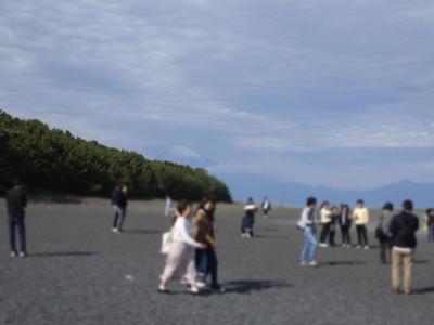富士山と三保の松原と新入生