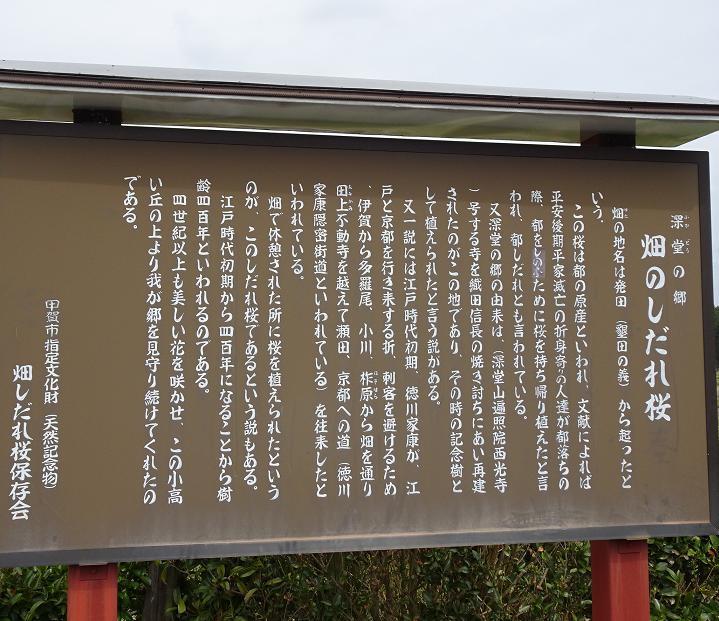 DSC01058f.jpg
