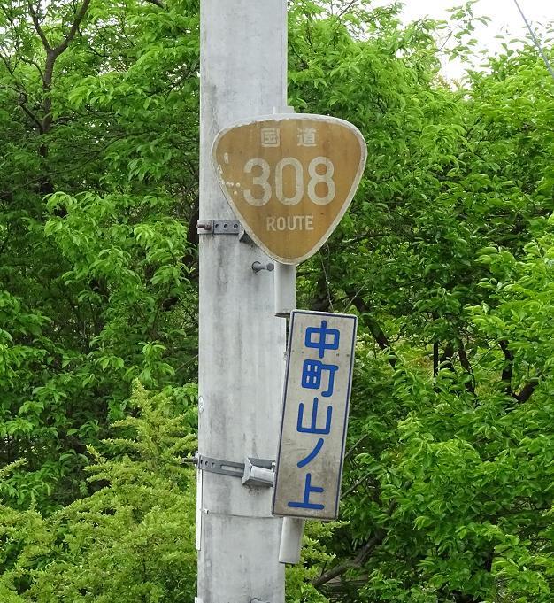 DSC01295f.jpg