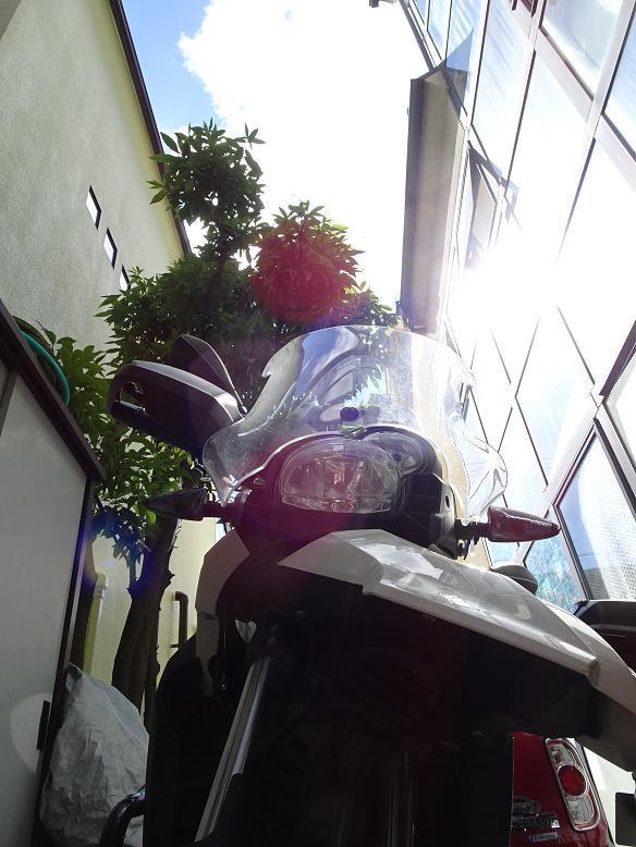 DSC01809(1)f.jpg