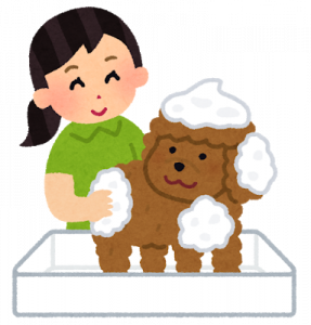 pet_shampoo_grooming_201808031223036e6.png