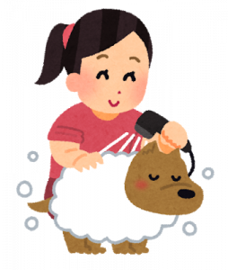 wash_pet_dog.png