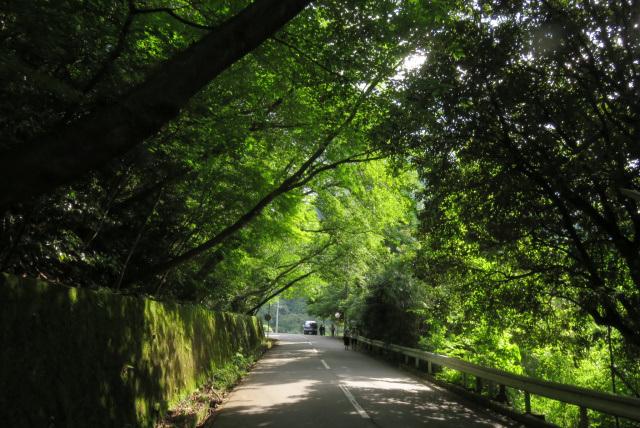六甲山_有馬温泉