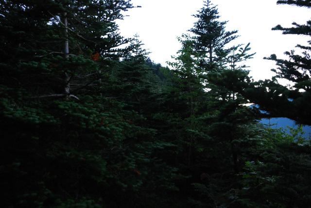 三伏山~本谷山