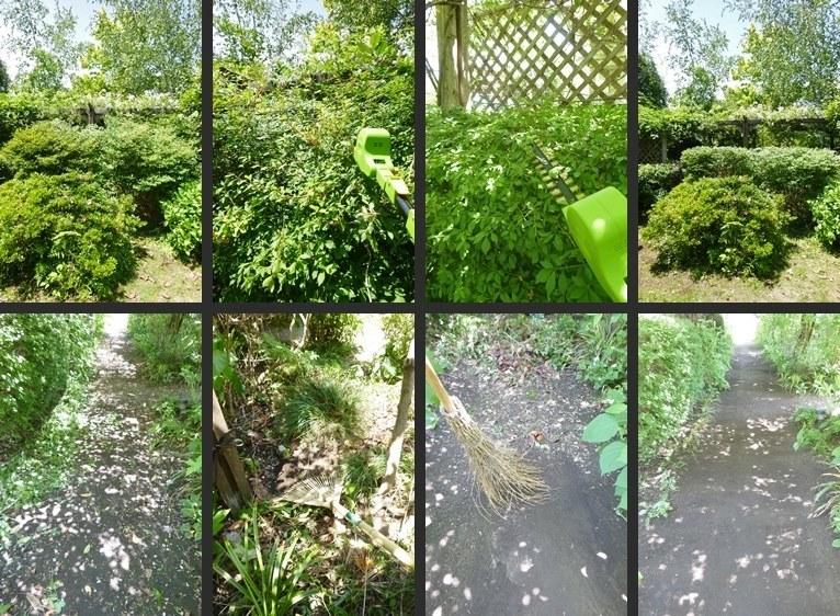 P2300537-horz-vert.jpg
