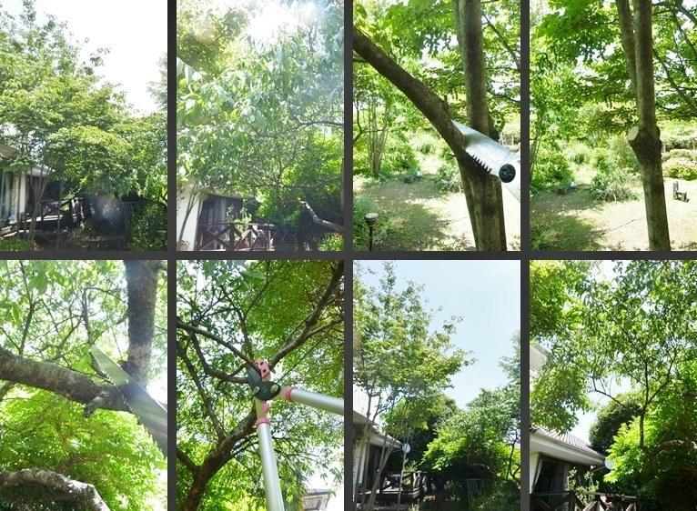 P2310821-horz-vert.jpg