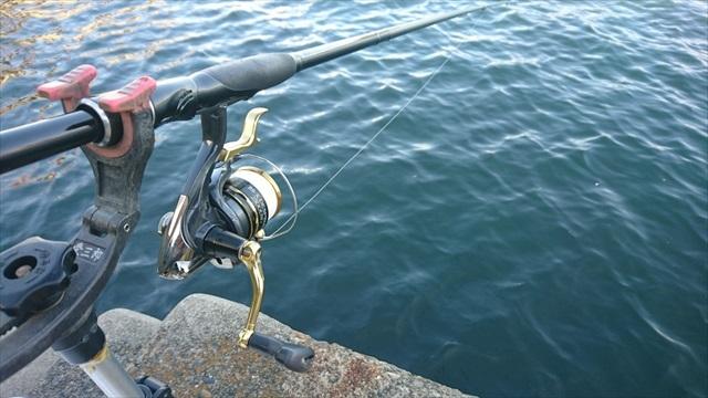 6:30 釣り開始