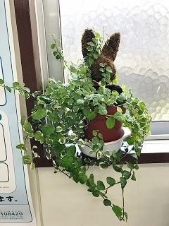 ユウビンキョクウサギ - コピー
