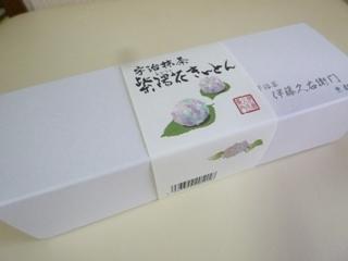 P1300450 (3)
