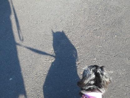 実結の影、うる星やつらのラムちゃんみたい