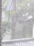 0629 大雨1