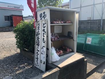 20180611野菜販売