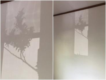 20180617光と影