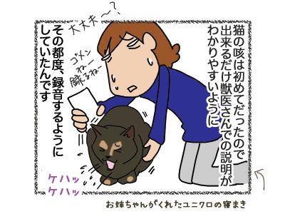 02082018_dog2.jpg