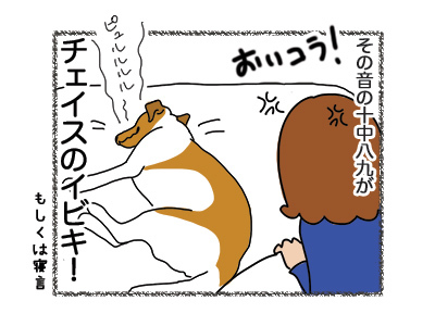 02082018_dog4.jpg