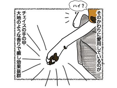 08062018_dog2.jpg