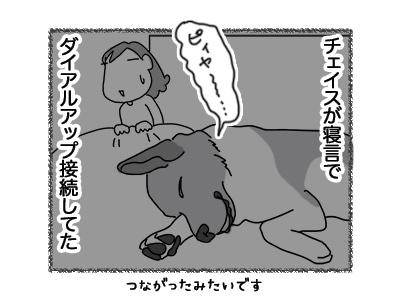 09072018_dog4.jpg
