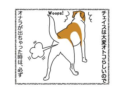 11062018_dog1.jpg