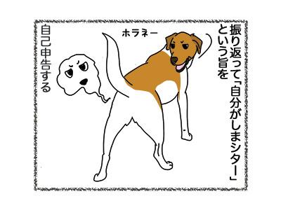 11062018_dog2.jpg