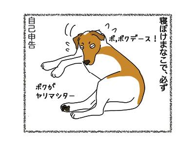 11062018_dog4.jpg