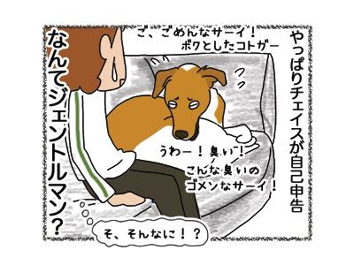 11062018_dog6.jpg