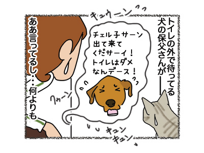 17072018_dog3.jpg