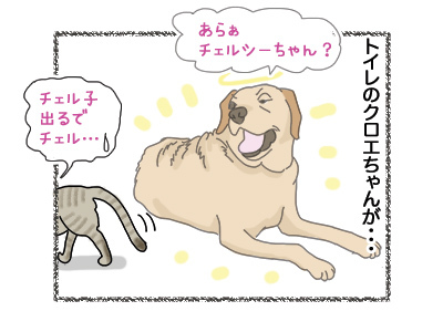 17072018_dog4.jpg
