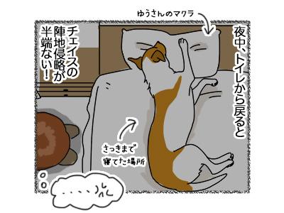 18062018_dog1.jpg