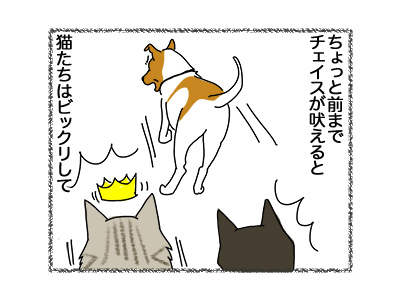 20062018_dog1.jpg