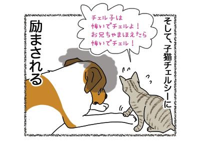 20062018_dog5.jpg