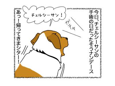 20072018_dog1.jpg