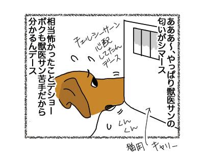 20072018_dog2.jpg