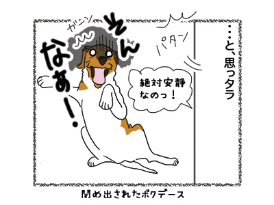 20072018_dog4.jpg