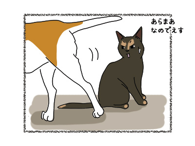 22062018_dog2.jpg