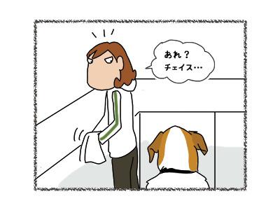 22062018_dog3.jpg