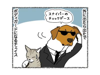 25062018_dog3.jpg