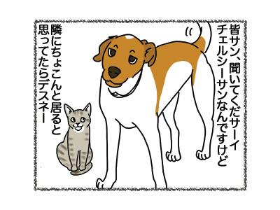25072018_dog1.jpg