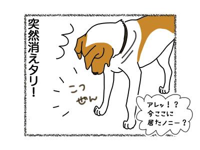 25072018_dog2.jpg