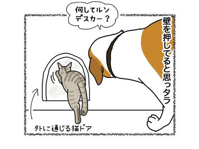 25072018_dog4.jpg