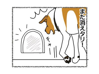 25072018_dog5.jpg