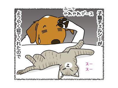 26062018_dog1.jpg